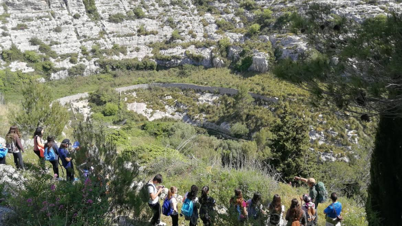 Cava Misericordia – The Valley of Mills