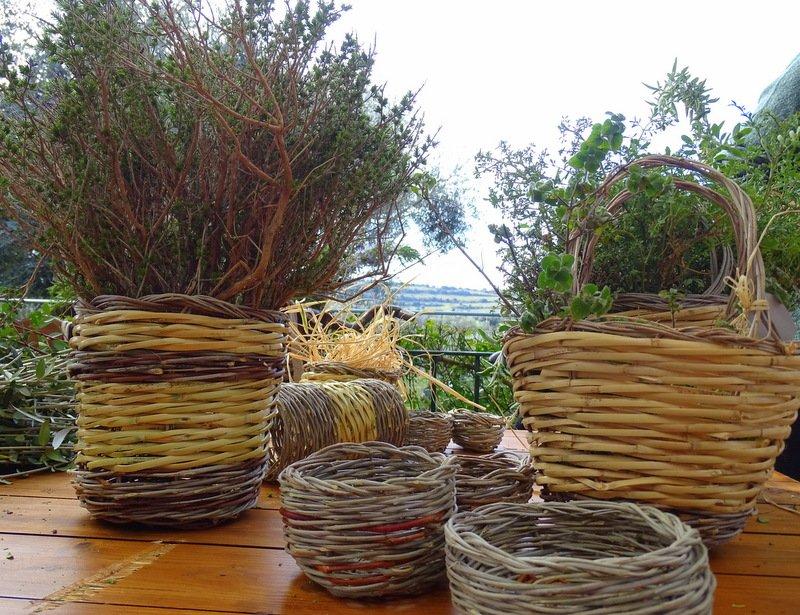 Ceste intrecciate di varie dimensioni contenenti piante aromatiche