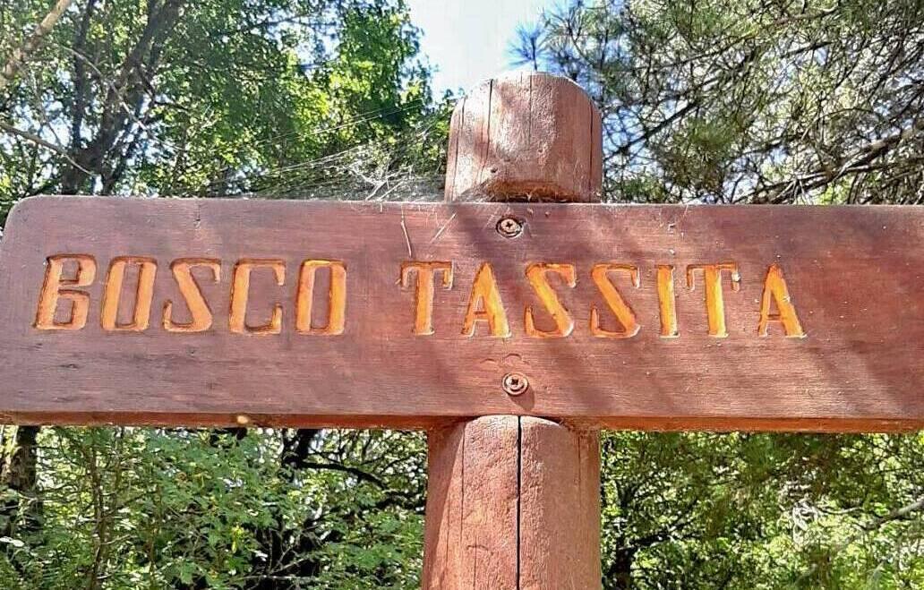 Passeggiata nel Bosco della Tassita e per le vie di Santiago di Sicilia