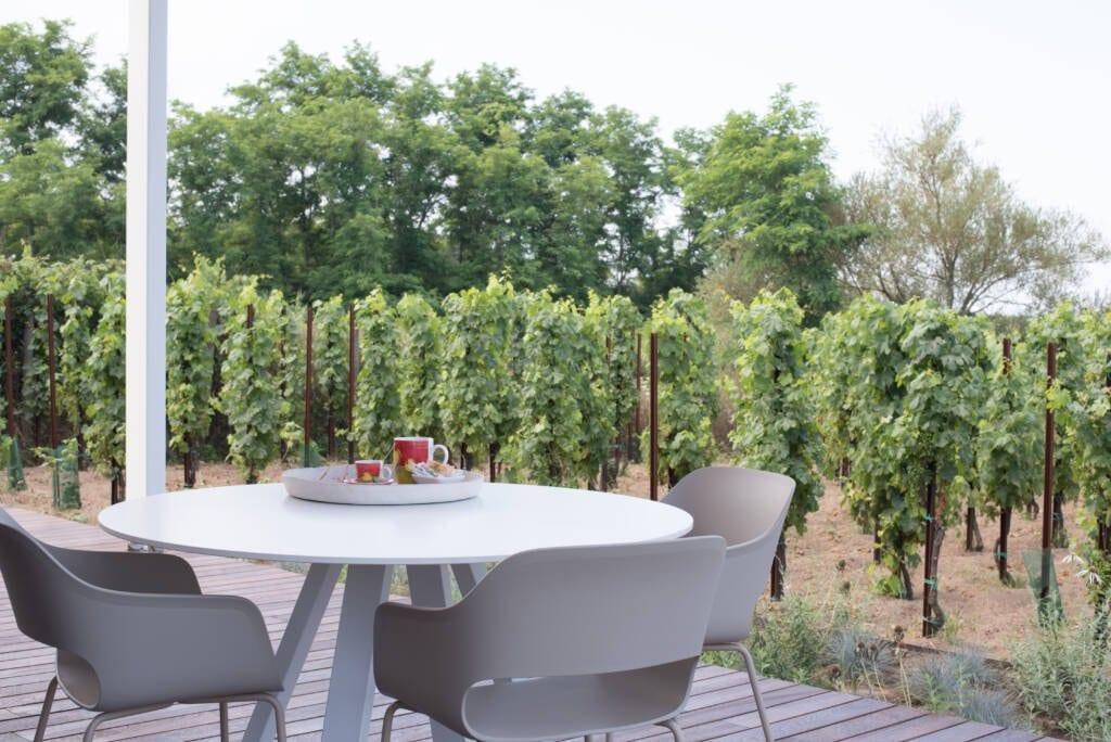 Tavolo con sedie nel patio esterno, vassoio con tazze e vigna