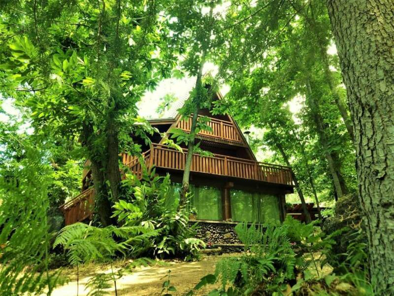 matilde's chalet nature house-isolani per caso (1)