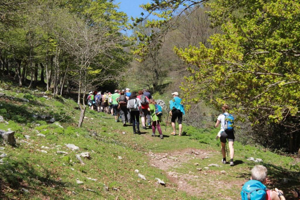 Gruppo di persone tra i boschi delle Madonie