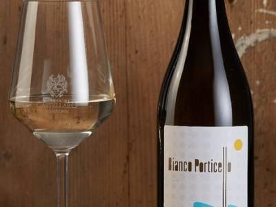 Bottiglia di vino e calice