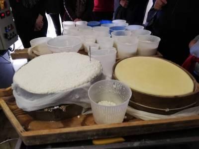 Esposizione di formaggi
